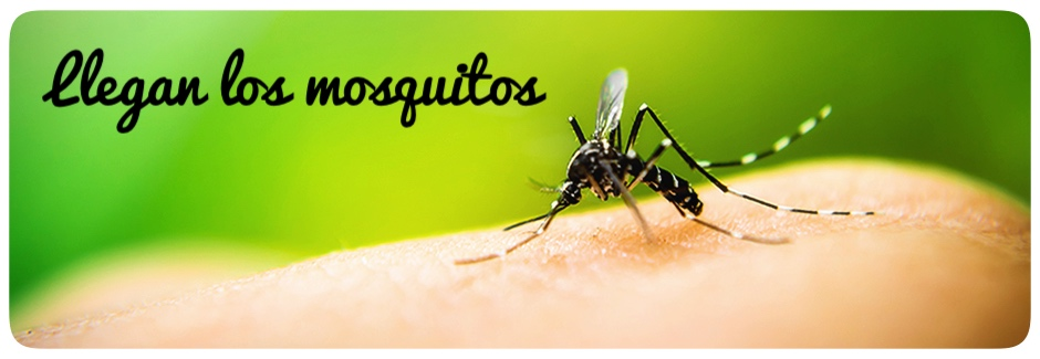 mosquitos,verano,picaduras,repelente,arbol de te,citronela,ortiga,herbolario online,cosmética natural,tratamientos naturales,productos naturales