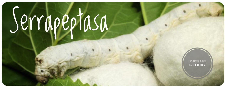 serrapeptasa,tos,mucosidad,catarro,gripe,llantediet,herbolario online, cosmética natural, tratamientos naturales, productos naturales