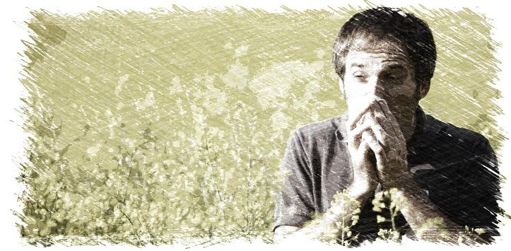 alergia,primavera,polen,gramineas,antihistamínico,quercitina,magnesio,herbolario online,cosmética natural,tratamientos naturales,productos naturales