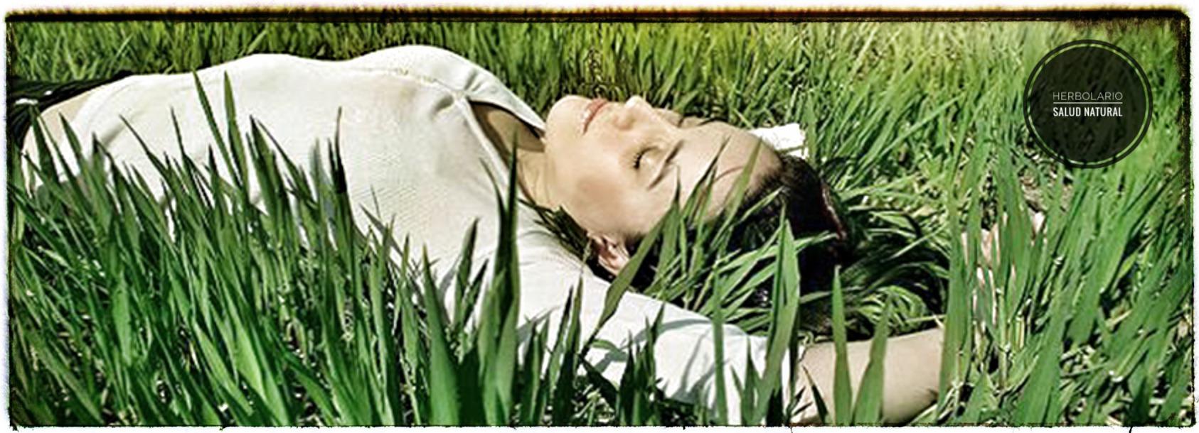 alimentos,estrés,antiestrés,platano,almendra,pasas,espinacas,herbolario online, cosmética natural,tratamientos naturales, productos naturales