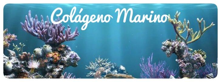colágeno,colágeno marino, articulaciones,huesos,dolores articulares, herbolario online, cosmética natural, tratamientos naturales, productos naturales