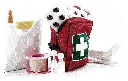 botiquin,gripe,catarros,resfriados,equinacea,reishi,astragalo,defensas,sistema inmunologico,herbolario online,cosmética natural
