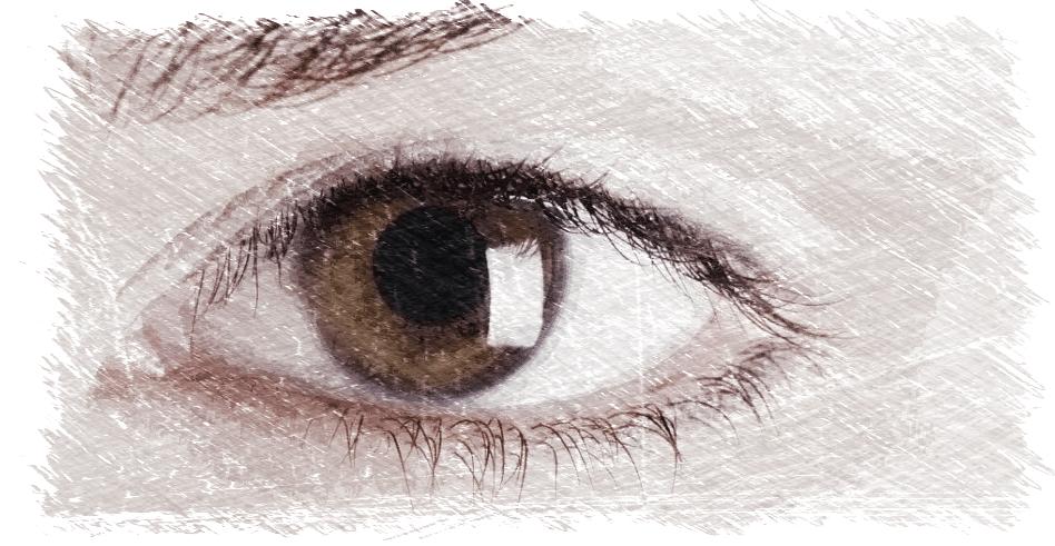 degeneración macular,retina,visión,dha,omega 3,salud ocular,dmae,ácidos grasos esenciales,herbolario online,cosmética natural,tratamientos naturales,productos naturales