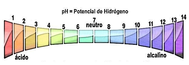 regula ph,acidez,escala de ph,alcalinizante,dieta,herbolario online,ácido-base,productos naturales,tratamientos naturales