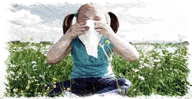 fiebre del heno,alergia,histamina,polen,antihistaminico,rinitis alérgica,herbolario online,cosmética natural,tratamientos naturales,productos naturales