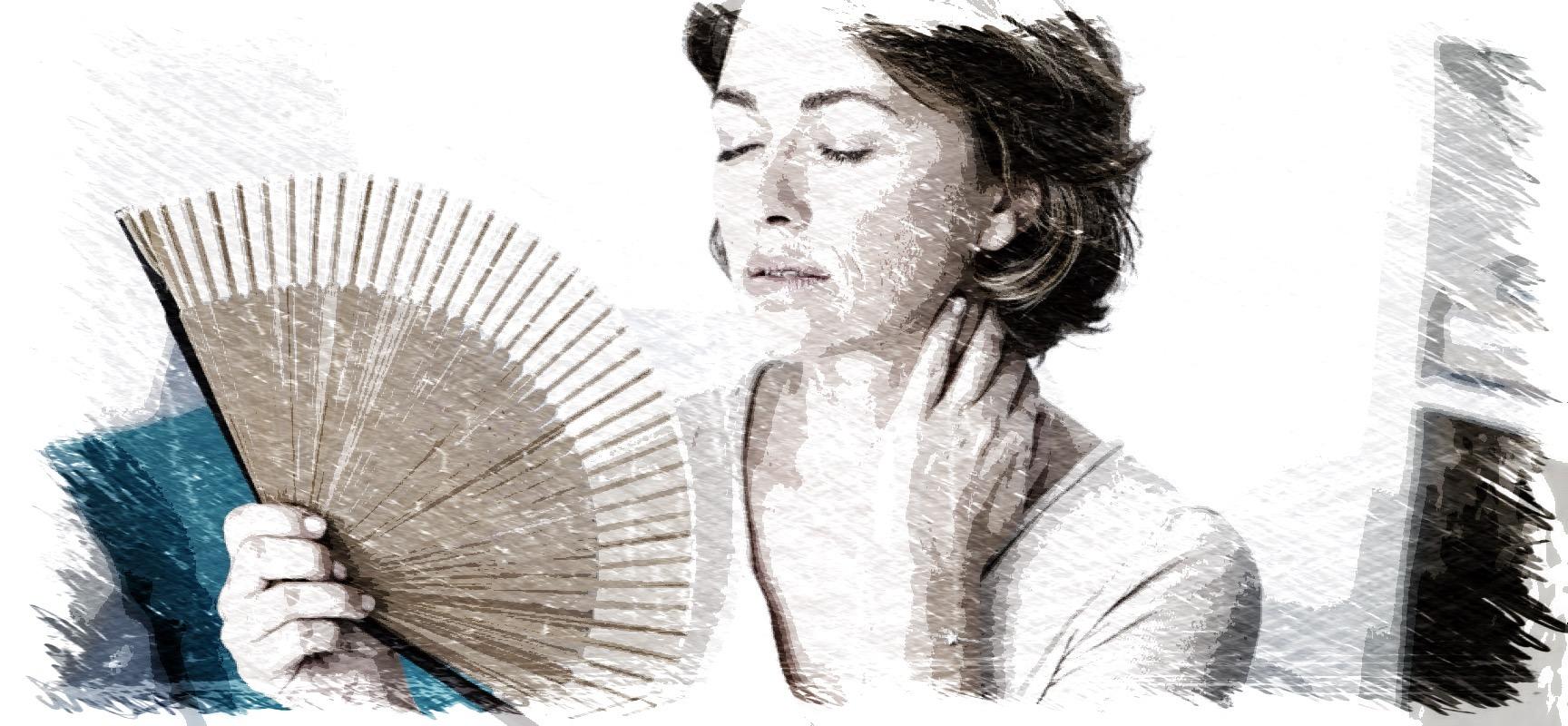 menopausia,estrogenos,fitoestrogenos,soja,isoflavonas,garcinia cambogia,maca,herbolario online,cosmética natural,tratamientos naturales,productos naturales