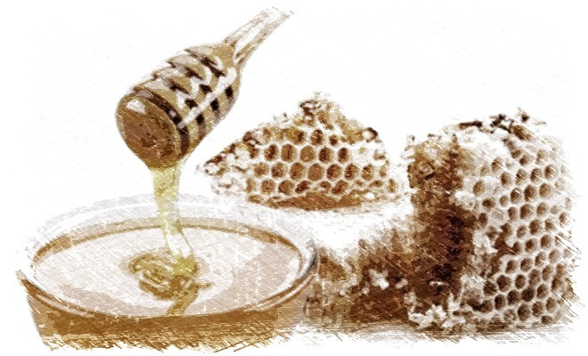 miel,antibiótico,usos de la miel,virus,bacterias,herbolario online,cosmética natural,tratamientos naturales,productos naturales