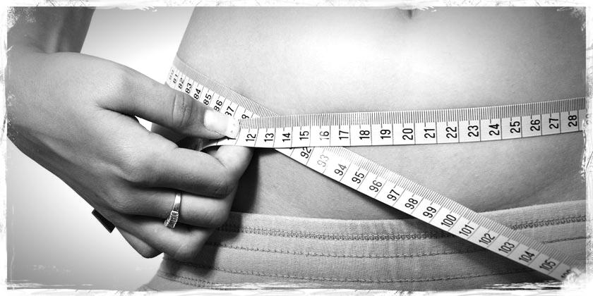 coleus forskohlii,equisalud,obesidad,quemagrasas,dieta,control de peso,adelgazante,herbolario online,cosmética natural,productos naturales