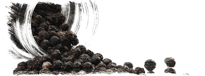 Pimienta negra, una especia valorada en la cocina y por la medicina