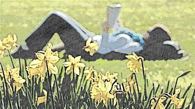 alergia primaveral,insomnio,gastroenteritis,cistitis,infecciones urinarias,herbolario online,cosmética natural,tratamientos naturales,productos naturales
