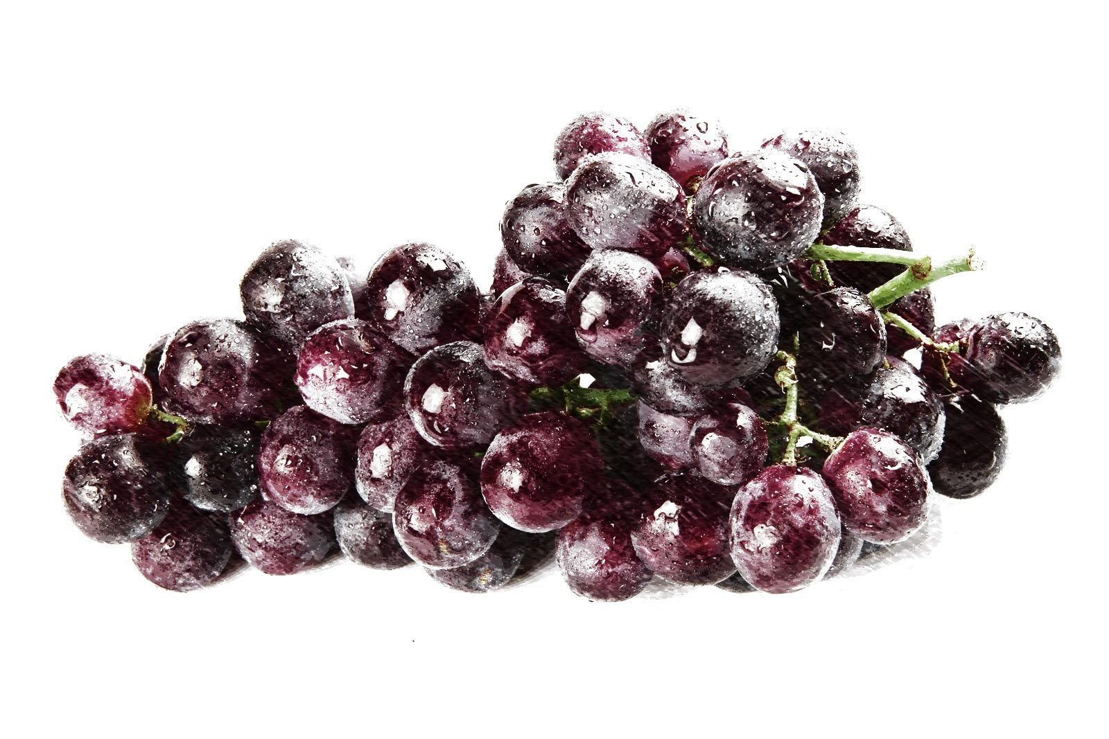 resveratrol,uva,polygonum,corazon,colesterol,diabetes,antioxidante,herbolario online,cosmética natural,tratamientos naturales,productos naturales