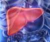 Detoxificación hepática
