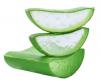Beneficios internos del consumo de Aloe Vera