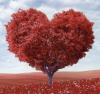 5 ideas de regalos originales para tu pareja, perfectas para San Valentín